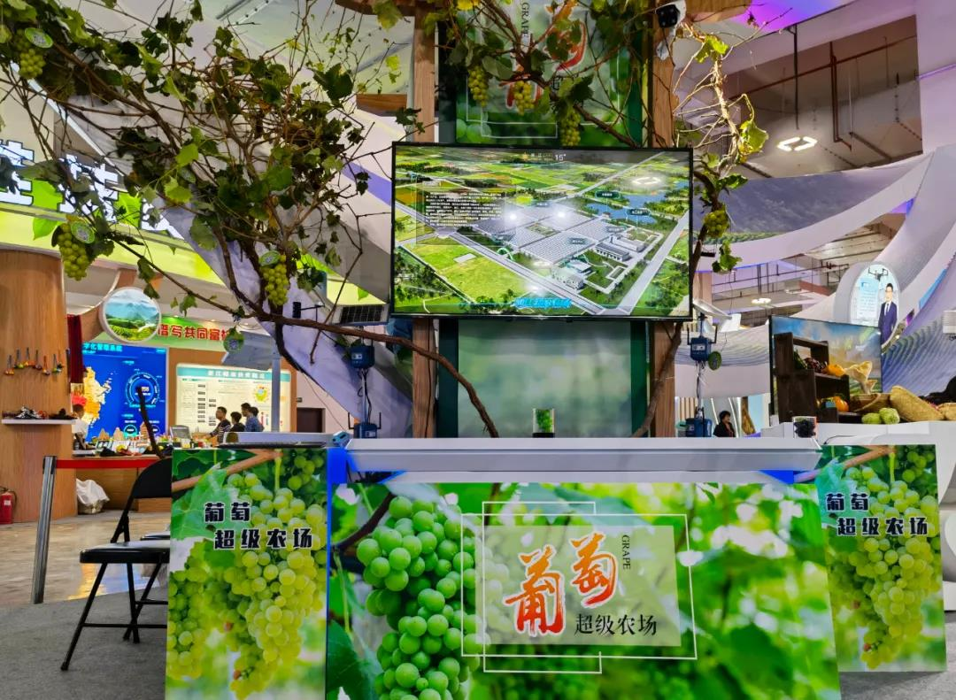 New Irend of Industrial Digitalization from Pujiang Grape
